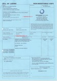 进口提单样板Sample bill of lading